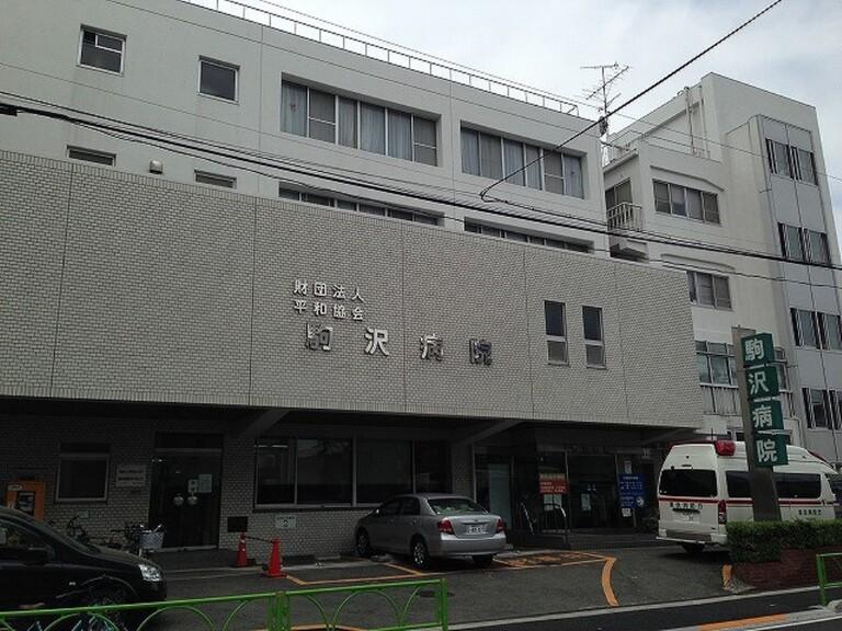 エルフレア駒沢(ゲオ駒沢大学店 (レンタルビデオ) まで176m)