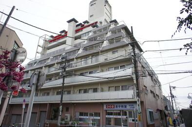 成城エコーハイツ(外観)