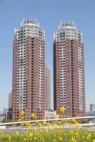 THE TOWERS DAIBA